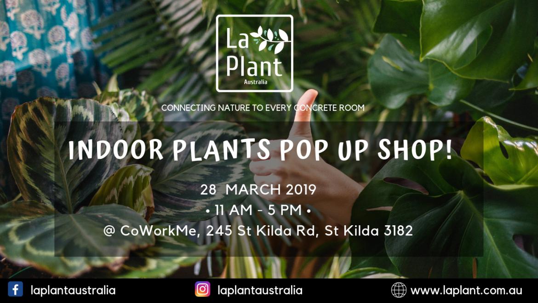 Indoor Pop Up Plant Shop @CoWork Me