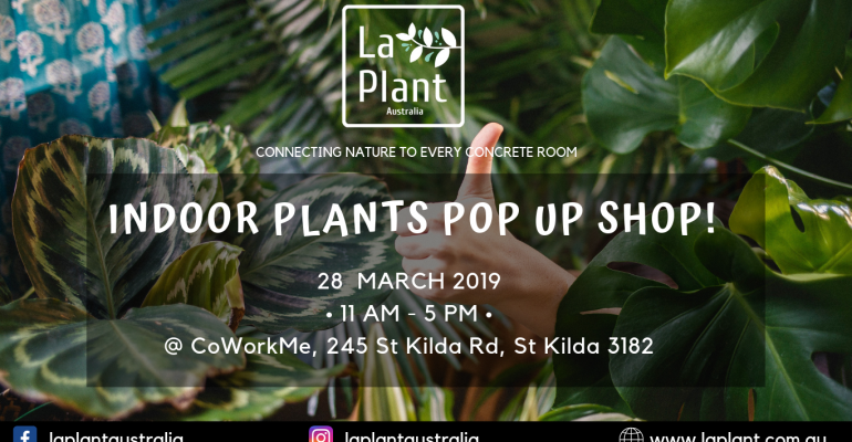 Indoor Pop Up Plant Shop @CoWork Me